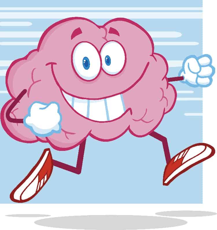 Hjärnan och vikten av träning