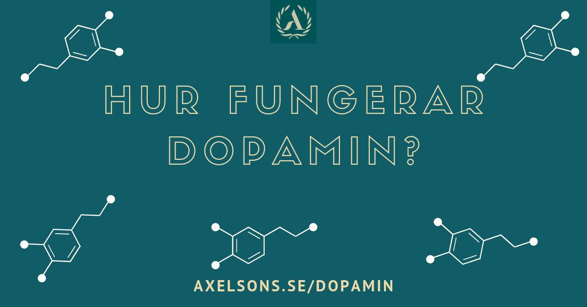Hur fungerar dopamin? Axelsons.se