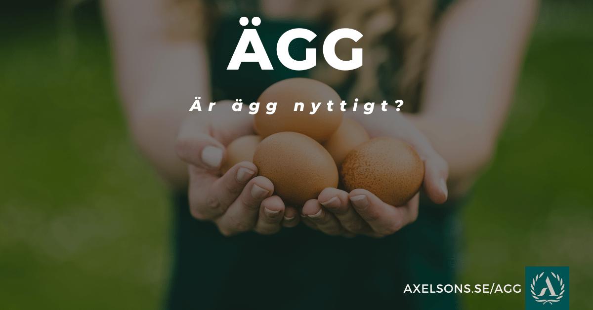Är ägg nyttigt?