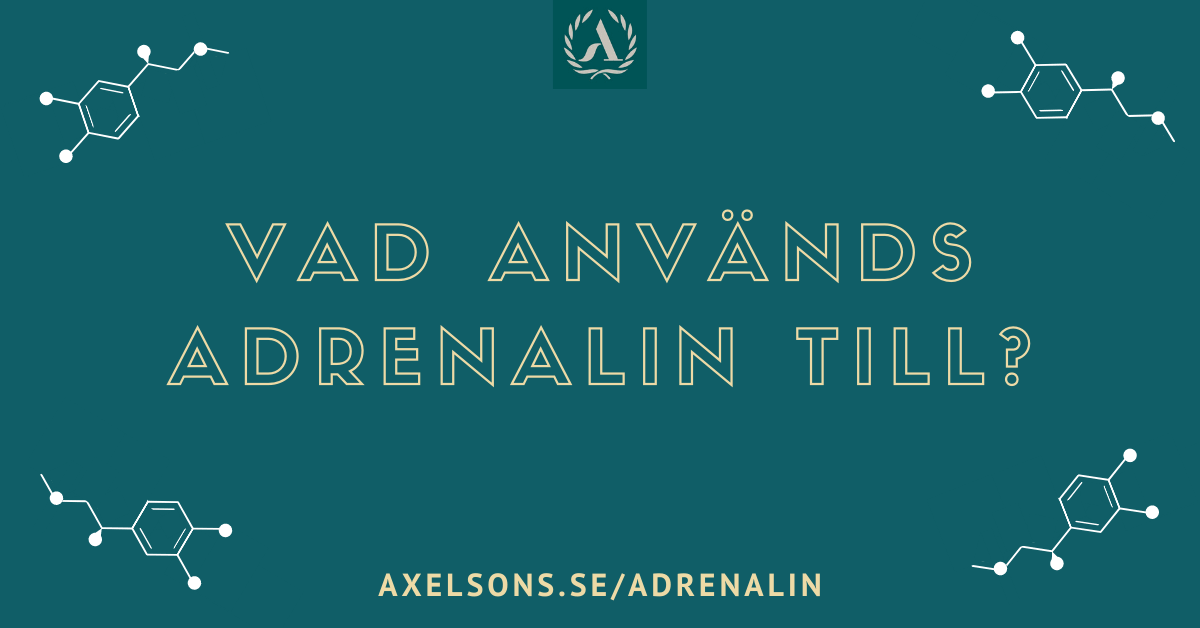 Vad används adrenalin till i din kropp?