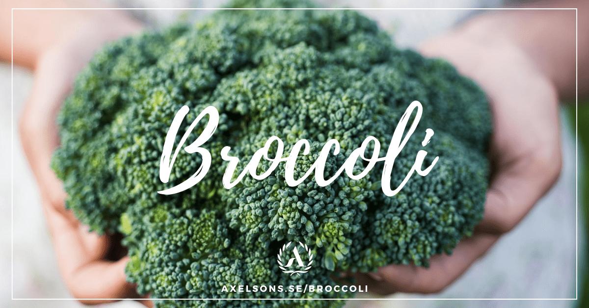 Broccoli - Allt du behöver veta och lite till