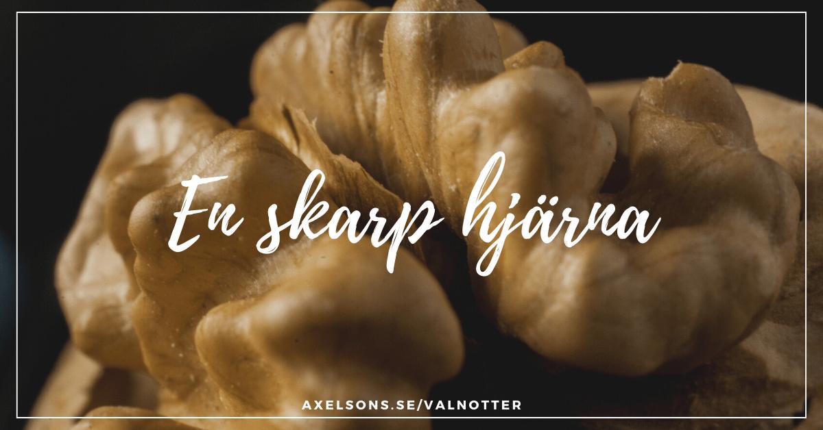 Valnötter och din hjärna